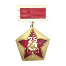 25 лет - Стройбат, СССР