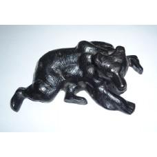 Медведь, КАСЛИ
